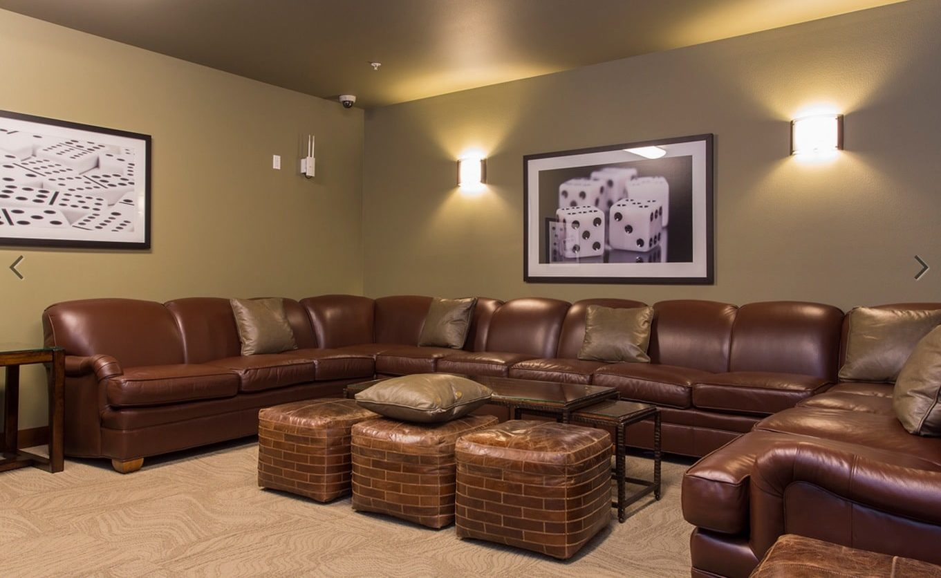 Brown Leather Couches in Commercial Rec Center